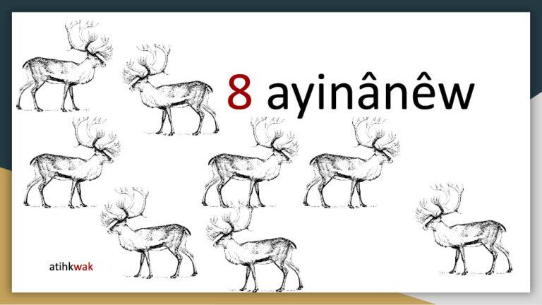 akihtâsona-numbers1024_11