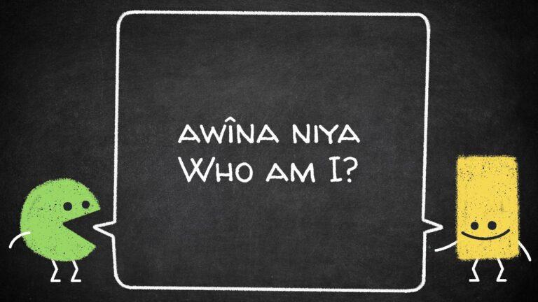 awîna niya-page-001